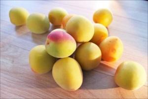 干し梅は国産にこだわろう!和歌山で人気の梅を使った商品が豊富な【小森梅選堂】