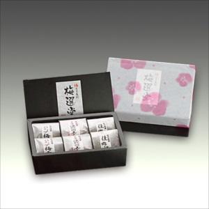 紀州梅を通販でお届けしている【小森梅選堂】は贈答としておすすめの商品や人気の商品が充実